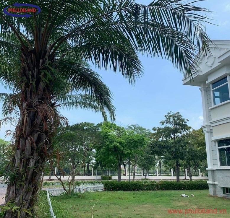 villa chateau phu my hung quan 7 3 778x738 - Bán nhanh Villa Chateau, Phú Mỹ Hưng, nhà thô